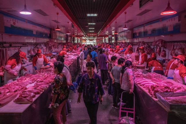 Bí mật bên trong kho dự trữ thịt lợn chiến lược của Trung Quốc - 2