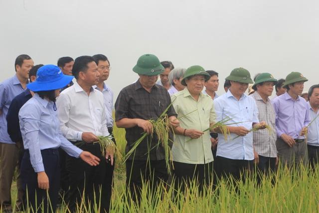 Quảng Trị huy động hơn 65 ngàn tỉ đồng xây dựng nông thôn mới - 3