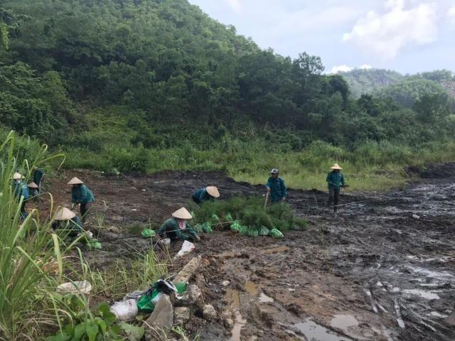 Quảng Ninh yêu cầu xử lý hiện tượng nước suối ô nhiễm chảy ra Vịnh Hạ Long - 4