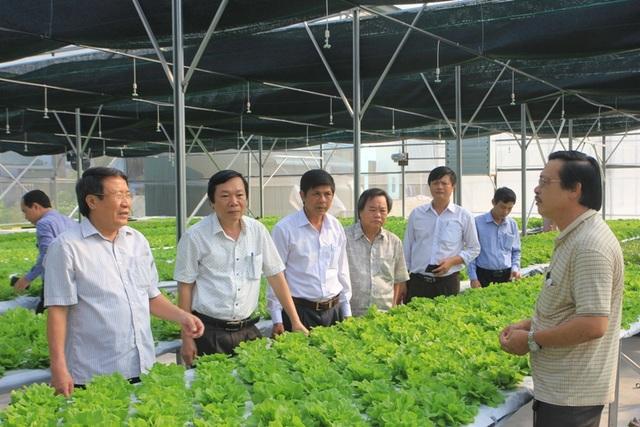 Quảng Trị huy động hơn 65 ngàn tỉ đồng xây dựng nông thôn mới - 4