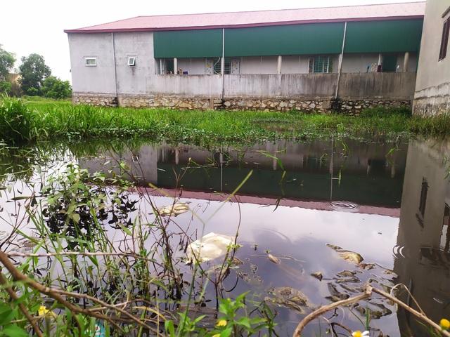 """Quy hoạch khu dân cư """"bỏ quên"""" mương thoát nước tại Hà Tĩnh - 4"""