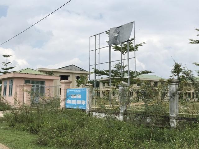 Quảng Ngãi: Trung tâm công nghệ sinh học chỉ để trồng nấm? - 1