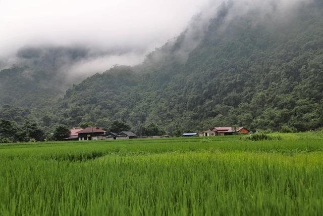 Vụ xâm hại rừng đặc dụng Thần Sa: Dân đề nghị trả lại đất trồng lúa - 1