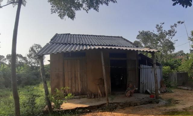 Oái oăm chuyện các cụ già không còn sức lao động được tặng bò để… thoát nghèo - 2