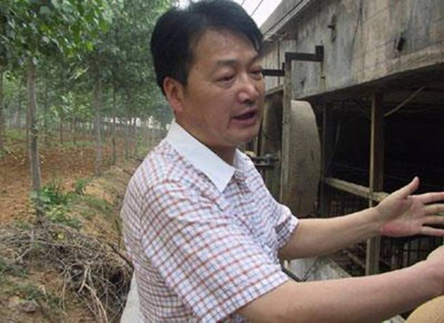 Nghỉ việc về quê nuôi 22 con lợn, nay thành đại gia khiến cả nước bất ngờ - 2