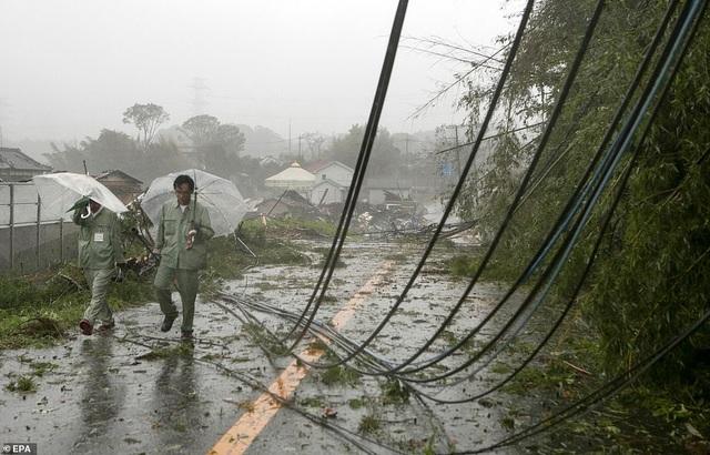 """Nhật Bản tan hoang sau siêu bão """"Quái vật"""" mạnh nhất trong 60 năm - 6"""