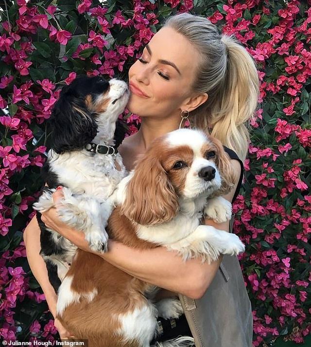 Julianne Hough đau buồn khi mất 2 cún cưng - 1