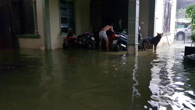 40 năm qua chưa từng chứng kiến trận ngập lụt kinh hoàng như thế - 9