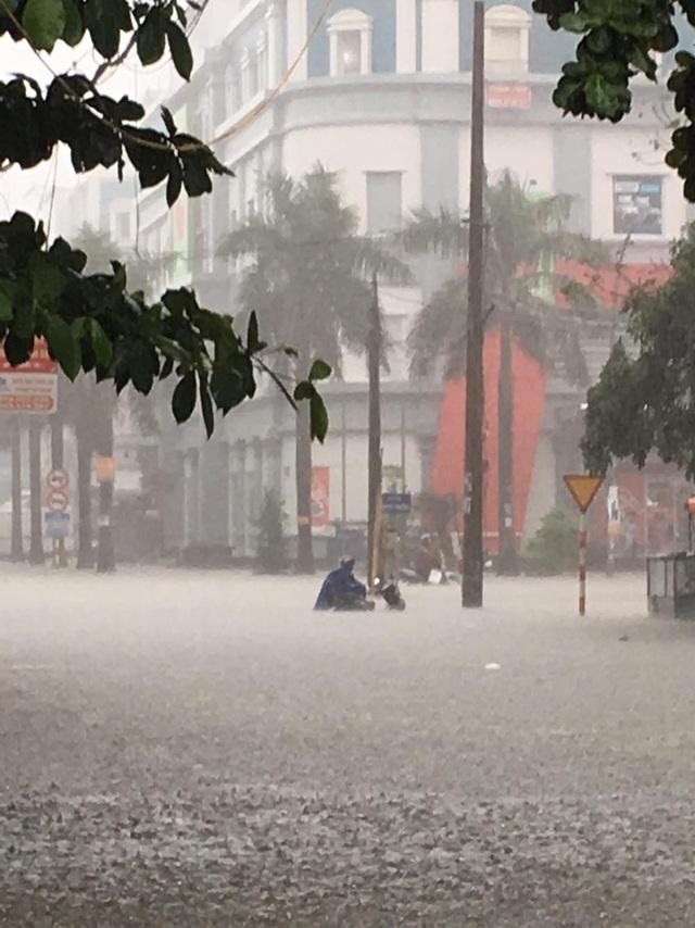 Mưa như trút, nước dâng cao cả mét, thành Vinh thất thủ - 9