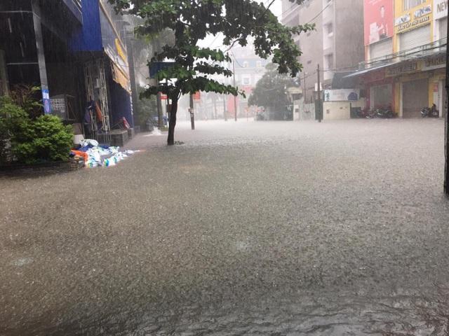 Mưa như trút, nước dâng cao cả mét, thành Vinh thất thủ - 10