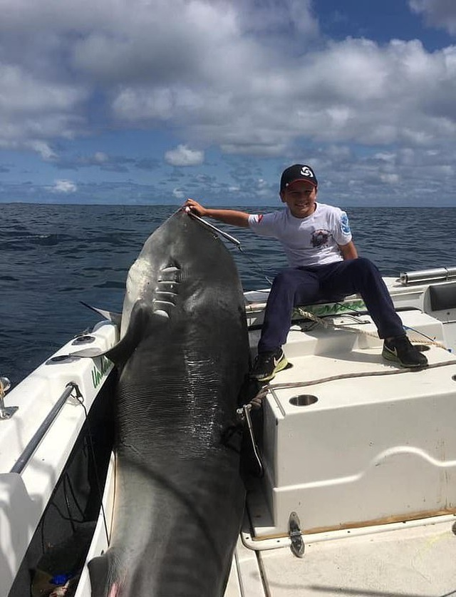 Nhóc 8 tuổi câu được cá mập khủng nặng 314 kg, phá kỷ lục thế giới - 1