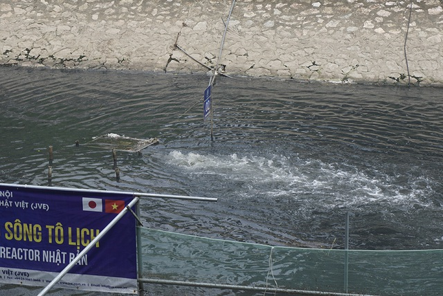 Sau 1 tháng, đàn cá Koi tại sông Tô Lịch bây giờ ra sao? - 10