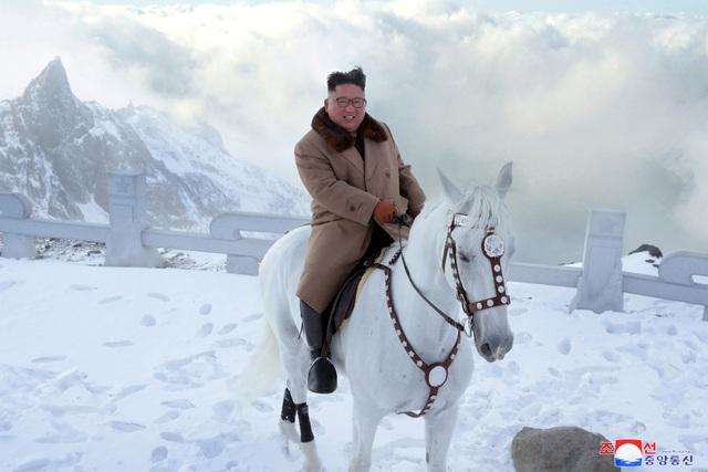 Ông Kim Jong-un cưỡi bạch mã lên đỉnh núi thiêng - 2