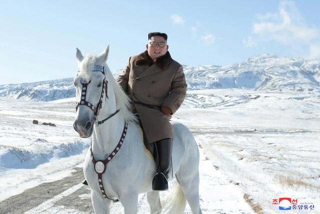 Ông Kim Jong-un cưỡi bạch mã lên đỉnh núi thiêng - 3