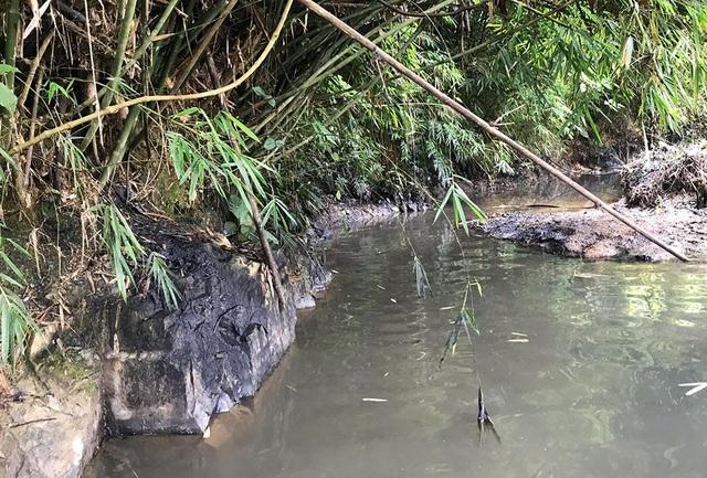 Khởi tố vụ án nước sạch Sông Đà bốc mùi, nhiễm dầu thải - 1