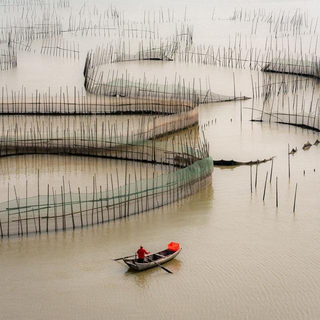 Ảnh đan lưới tại Việt Nam lọt top 10 tại cuộc thi ảnh quốc tế - 3