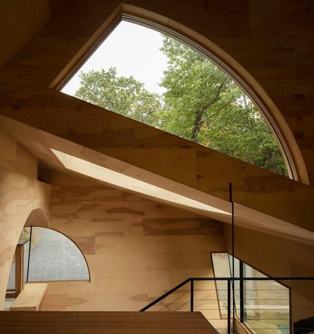 Nhà gỗ hình thang giữa rừng với cửa độc đáo đẹp hút mắt - 3