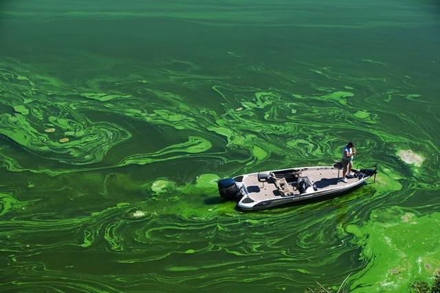 Nước bẩn giết nhiều người hơn cả chiến tranh - 3