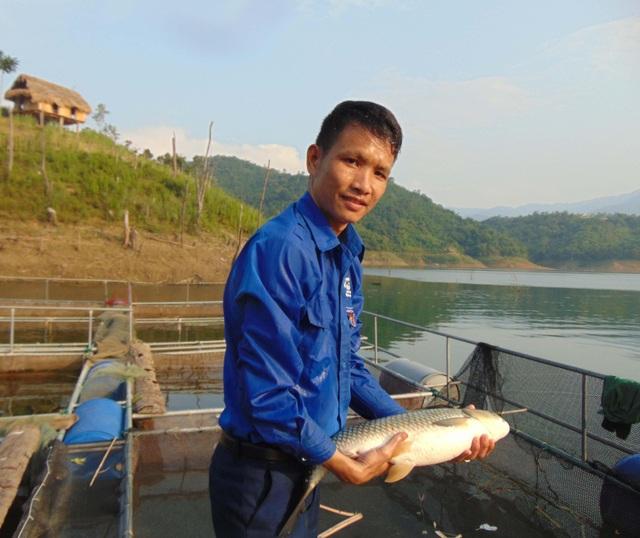 Nghệ An: Bí thư Đoàn xã nuôi cá lồng bè, thu nhập trăm triệu đồng mỗi tháng - 1