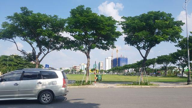 Thua kiện doanh nghiệp, UBND TP Đà Nẵng kháng cáo - 1