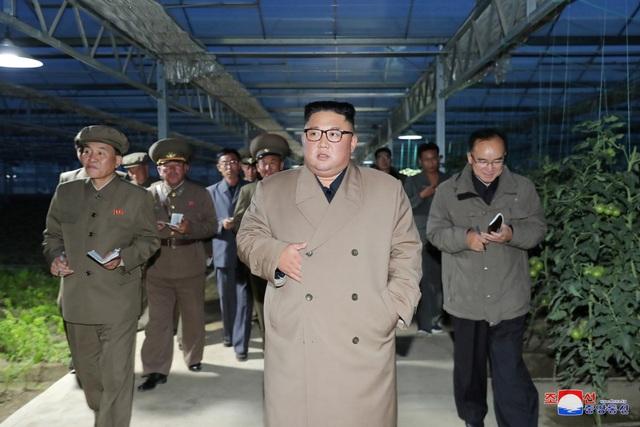 Ông Kim Jong-un thăm trang trại trồng rau trước nguy cơ thiếu lương thực - 2