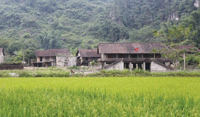 Dưới những ngôi nhà sàn đá độc đáo nhất Việt Nam - 1