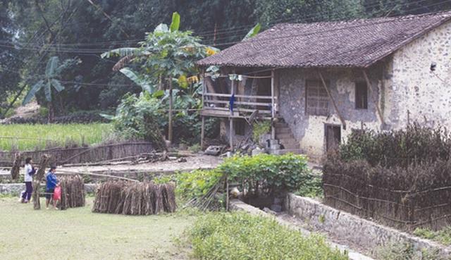 Dưới những ngôi nhà sàn đá độc đáo nhất Việt Nam - 8