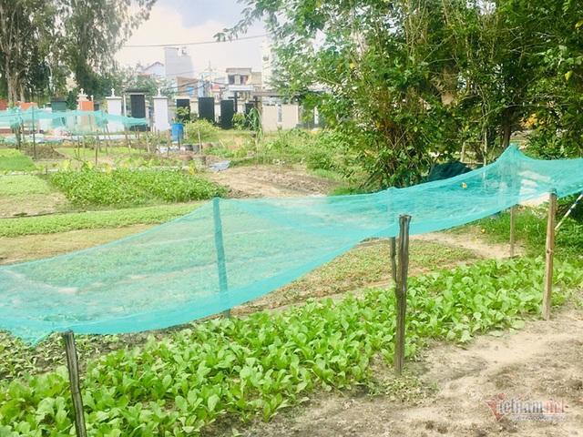Chuyện lạ ở khu đất vàng triệu đô Sài Gòn, dân khốn khổ vì mùi tử thi - 3