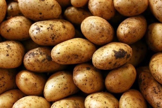 Tiếp năng lượng bằng khoai tây giúp tăng thành tích trong các môn thể thao - 2