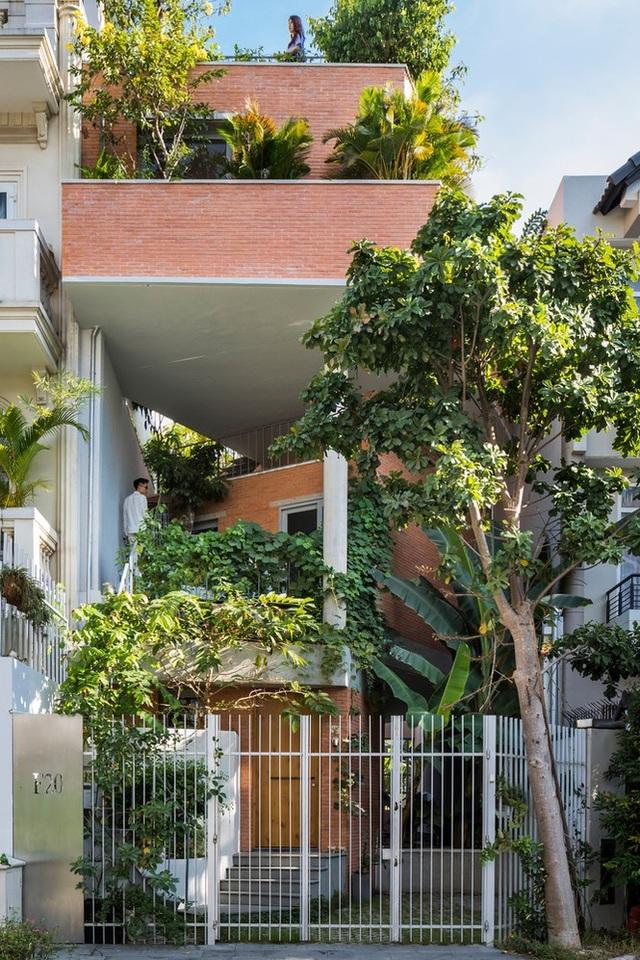 Nhà gạch nung rợp bóng cây xanh lọt đề cử kiến trúc đẹp nhất thế giới - 2