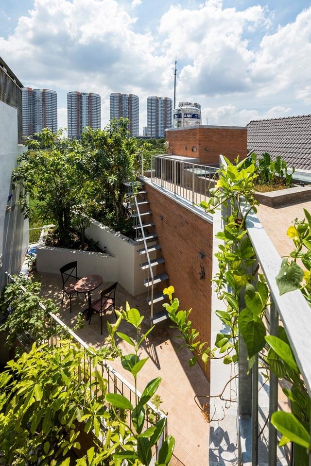 Nhà gạch nung rợp bóng cây xanh lọt đề cử kiến trúc đẹp nhất thế giới - 7
