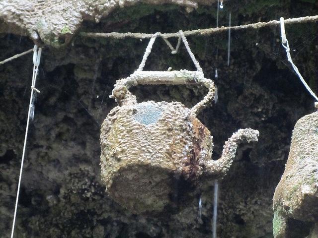 Giếng nước kỳ lạ khiến vạn vật …. hóa đá - 3