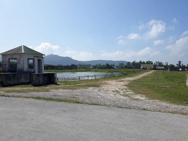 Dự án trồng chuối 4 triệu USD:Doanh nghiệp tháo chạy, xin không trả tiền dân - 2