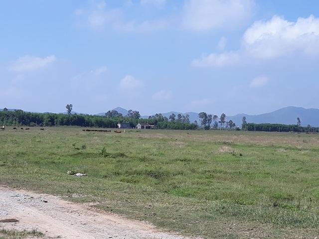 Dự án trồng chuối 4 triệu USD:Doanh nghiệp tháo chạy, xin không trả tiền dân - 3