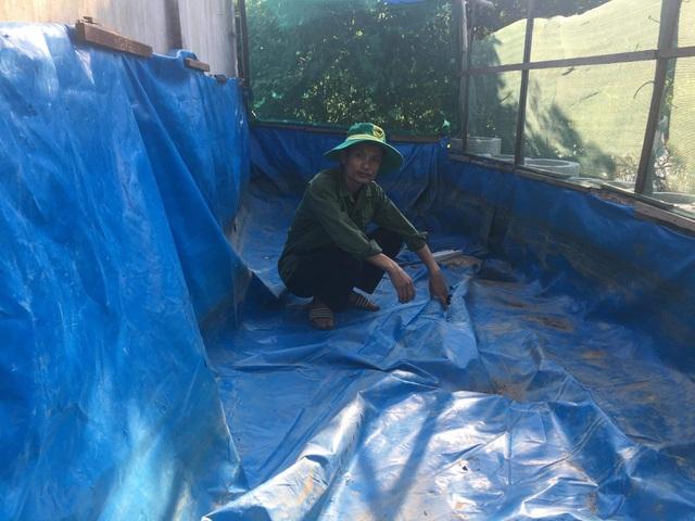 Lươn giống từ dự án thoát nghèo vừa nhận về đã chết sạch - 2