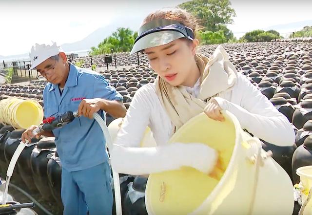 Việt Anh ôm Quỳnh Nga thân mật trên sóng truyền hình - 7