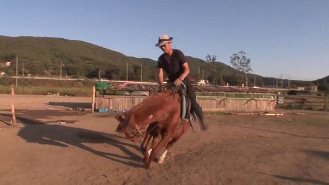 Chết cười với chú ngựa giả chết mỗi khi bị người cưỡi - 3