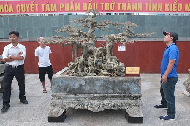 """Sanh """"Ngai vàng đất Việt"""" mua 10 triệu đồng, sau 15 năm trả vài tỷ không bán - 1"""