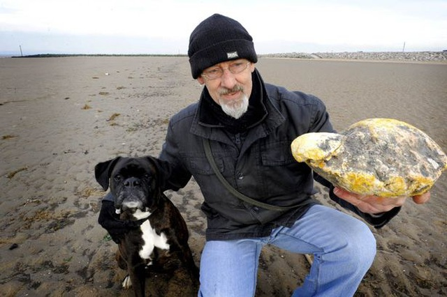 Tìm thấy khối đá lạ xù xì, ngư dân có khả năng trúng lớn 7,6 tỷ đồng - 2