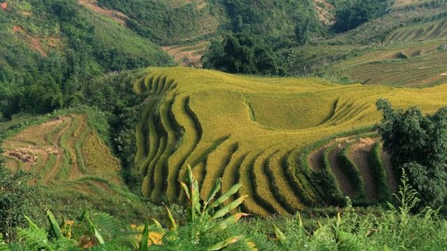 Kênh CNN giới thiệu 30 điểm đến đẹp nhất Việt Nam - 3