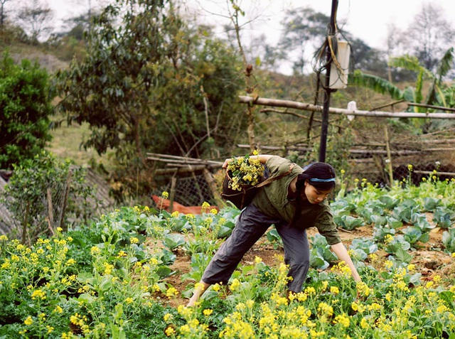 """Cận cảnh cuộc sống đẹp như mơ của cô gái được ví là """"tiên nữ đồng quê"""" của Việt Nam - 3"""