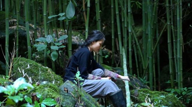 """Cuộc sống bình yên, không cần đến tiền của cô gái Đắk Lắk """"bỏ phố về rừng"""" - 4"""