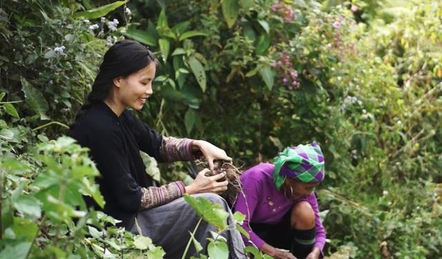 """Cuộc sống bình yên, không cần đến tiền của cô gái Đắk Lắk """"bỏ phố về rừng"""" - 7"""