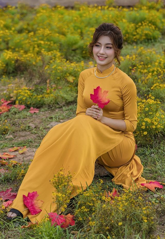 Mùa thu về dịu dàng trên cánh đồng hoa hướng dương Hà Nội - 4