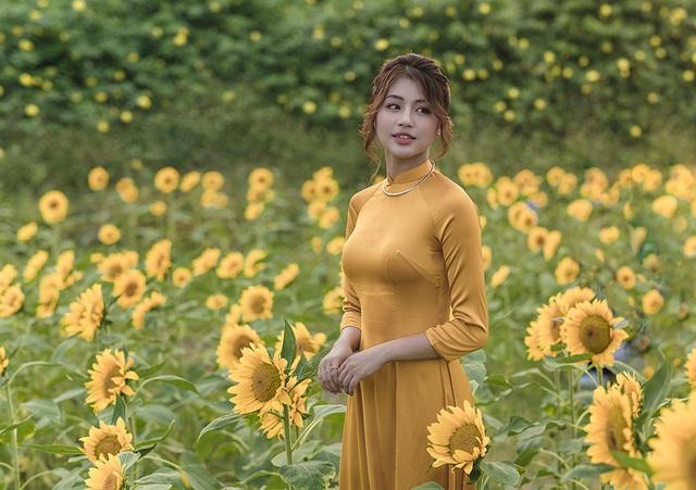 Mùa thu về dịu dàng trên cánh đồng hoa hướng dương Hà Nội - 3