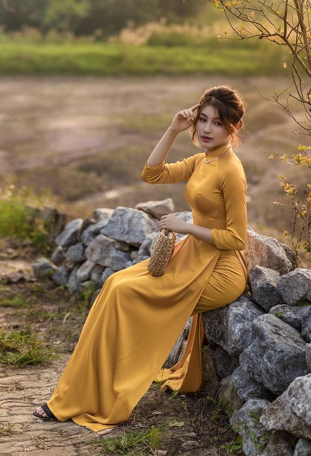 Mùa thu về dịu dàng trên cánh đồng hoa hướng dương Hà Nội - 6