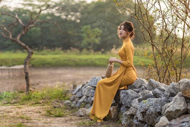 Mùa thu về dịu dàng trên cánh đồng hoa hướng dương Hà Nội - 5