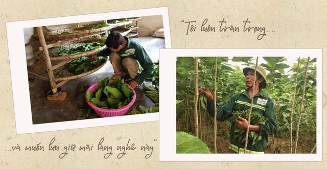 Thăm làng nghề trồng dâu nuôi tằm còn sót lại ở xứ Nghệ - 6