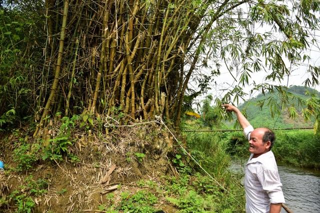 Tuyên Quang: Người dân như làm xiếc trên dây mỗi khi lũ về - 5