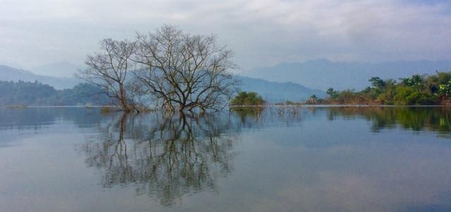 Việt Nam có thêm 4 danh hiệu Vườn Di sản ASEAN - 1